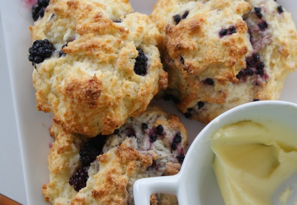 Blackberry+scones
