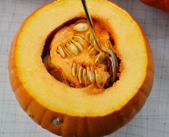 sugar pumpkin 1