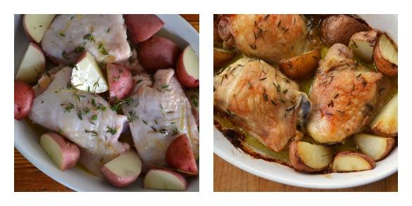 chicken Collage