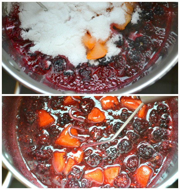 blackberry apricot jam Collage