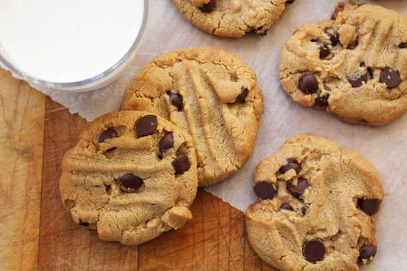 Grain free peanut butter chocolate chip cookies 2