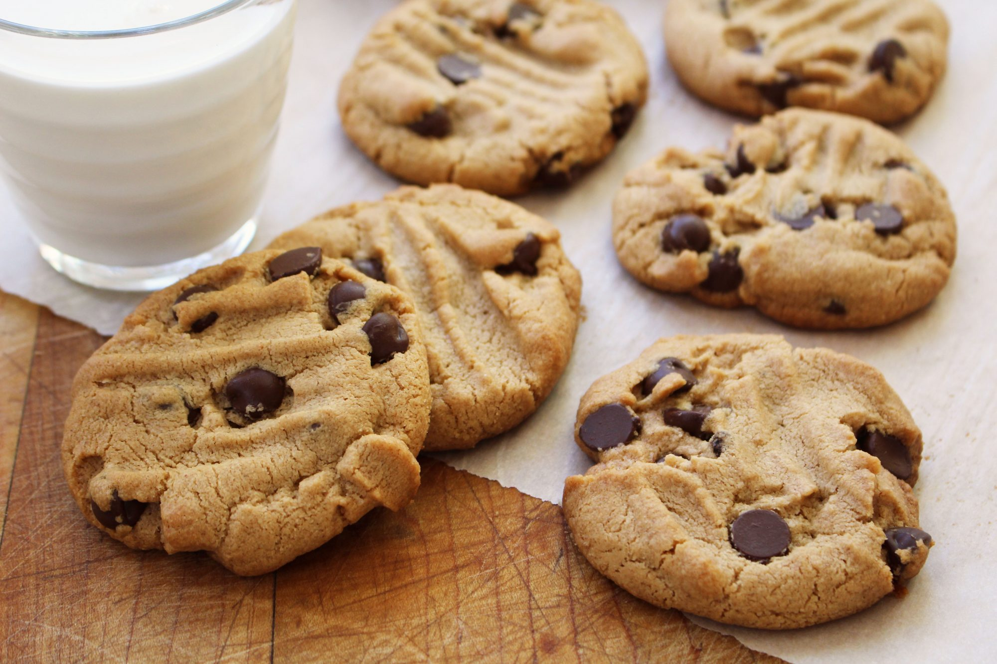 Grain free peanut butter chocolate chip cookies 3