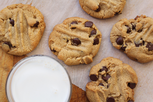 Grain free peanut butter chocolate chip cookies 4