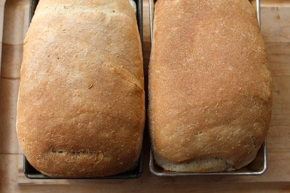white bean white bread 3