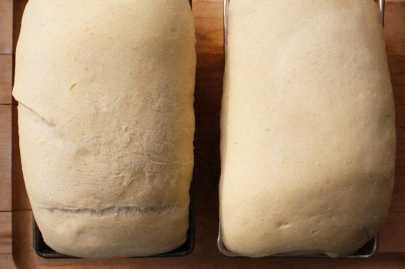 white bean white bread 4