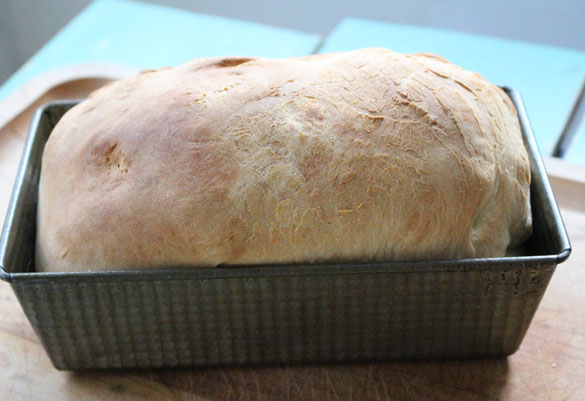 thermomix bread