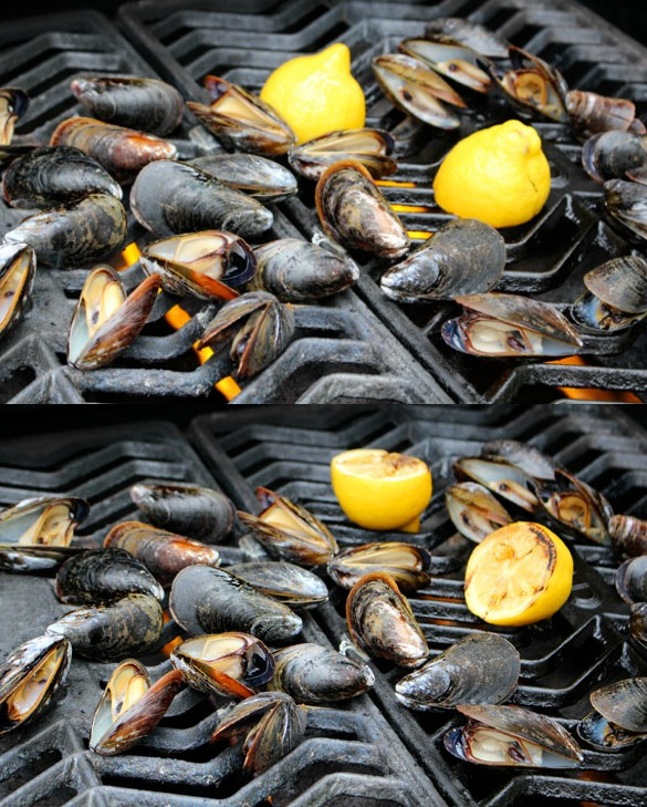 grilled mussels Collage