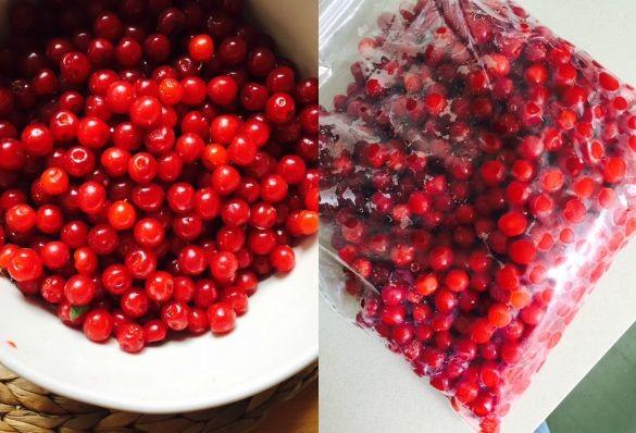 nanking-cherries-1