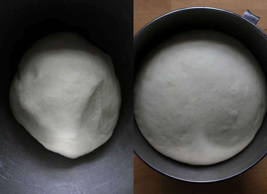 parker house dough