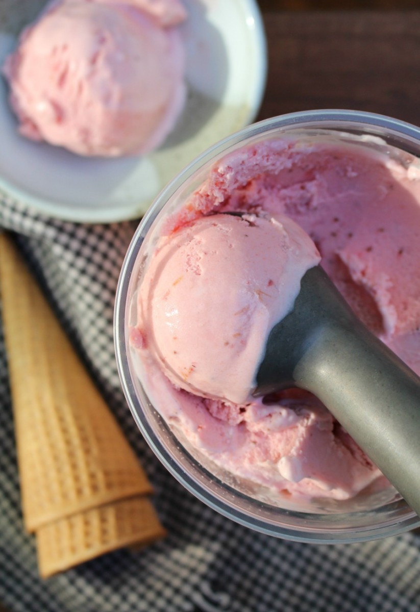 strawberry rhubarb ice cream 5