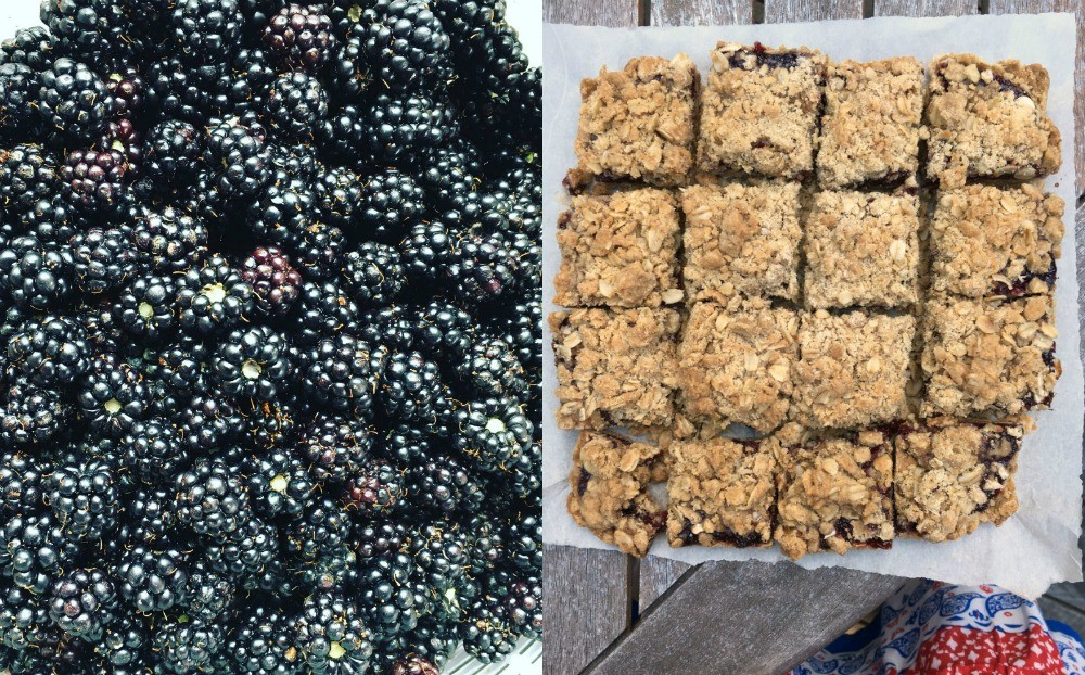 blackberry crumble squares