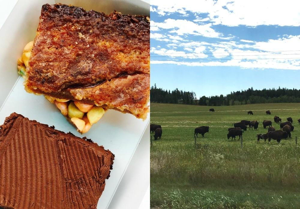Baking + bison