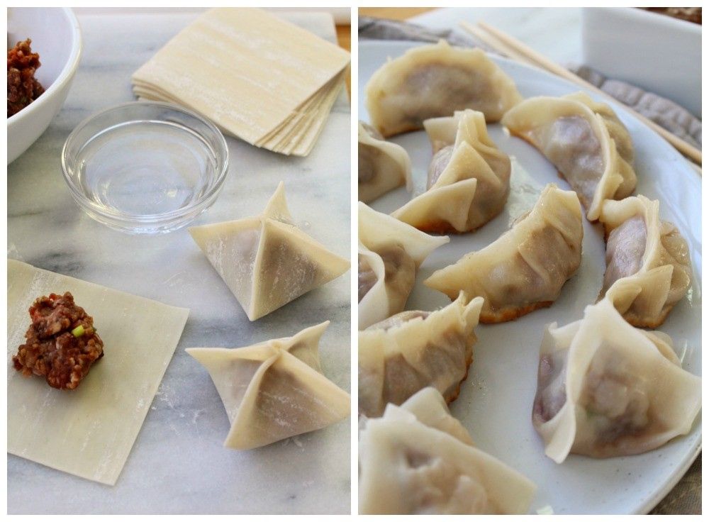 Dumplings + potstickers 12