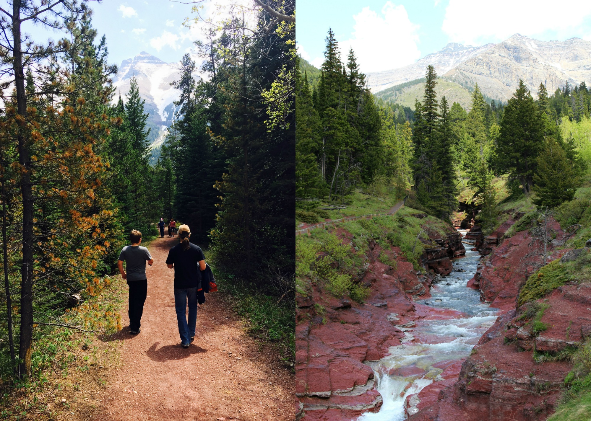 Waterton hikes