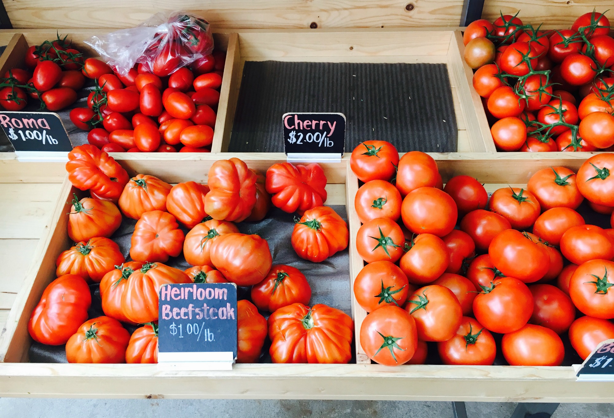 Redcliff tomatoes
