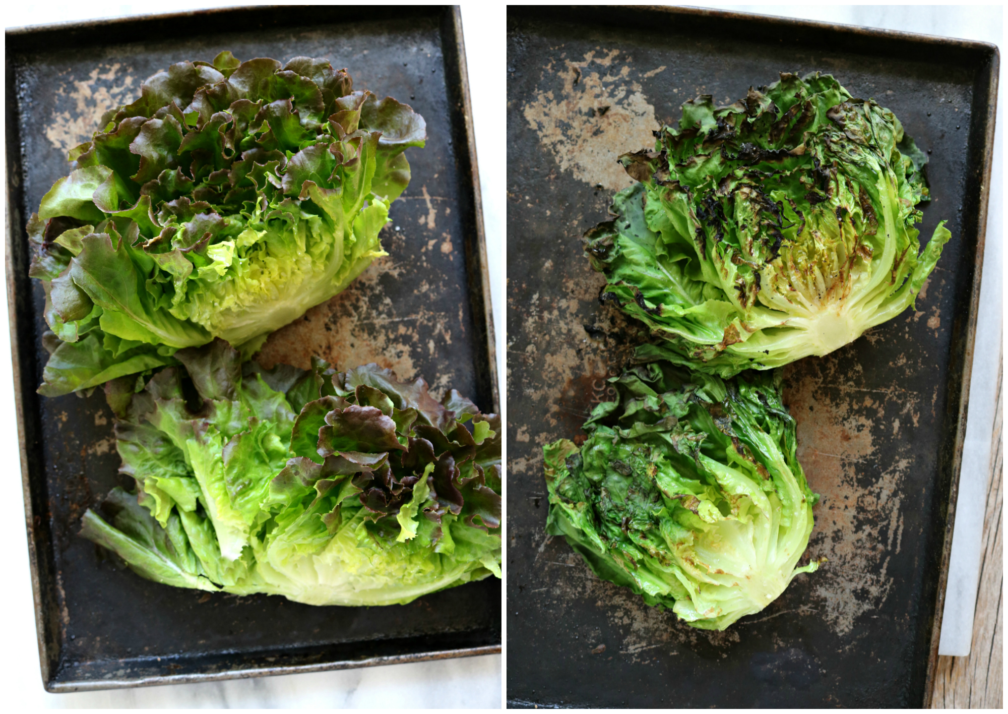 Grilled Inspired greens lettuce