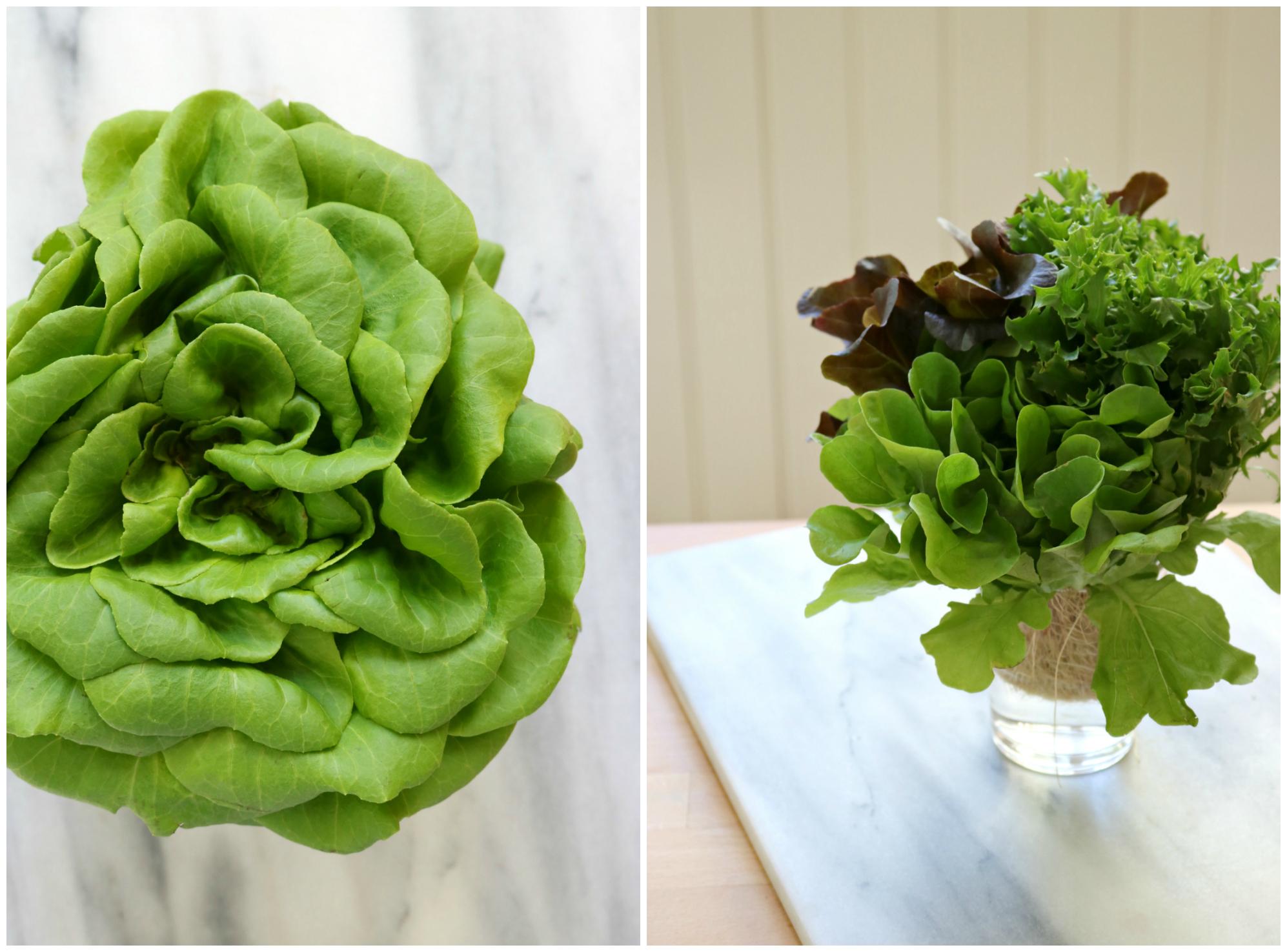 Inspired greens 5