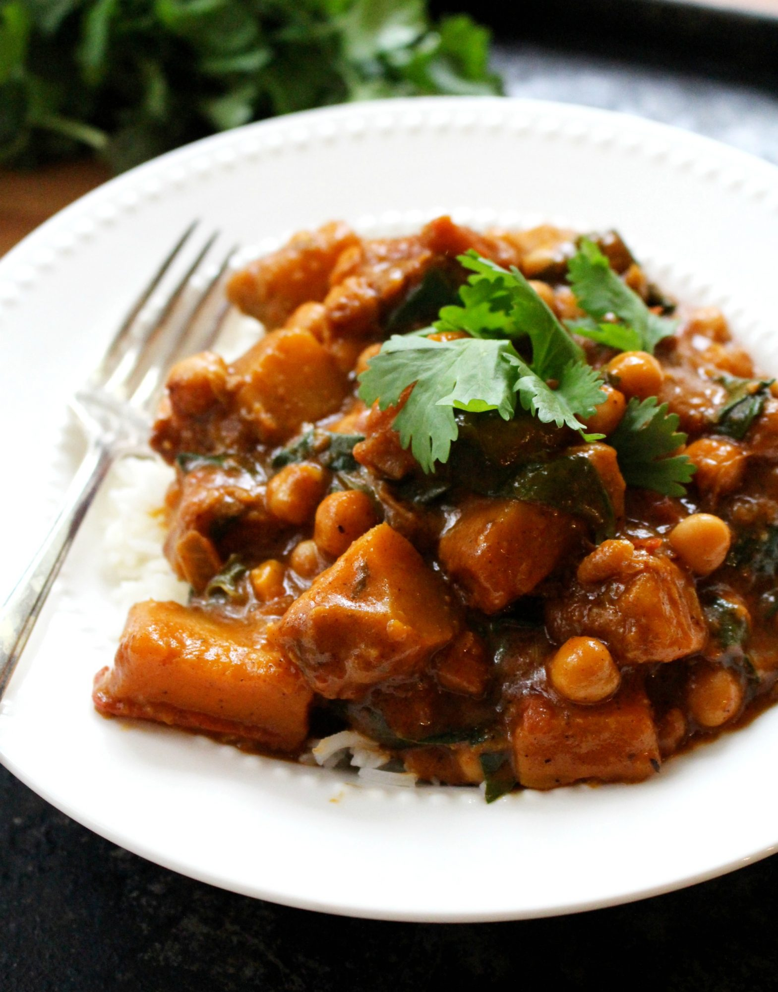 Winter squash curry 3